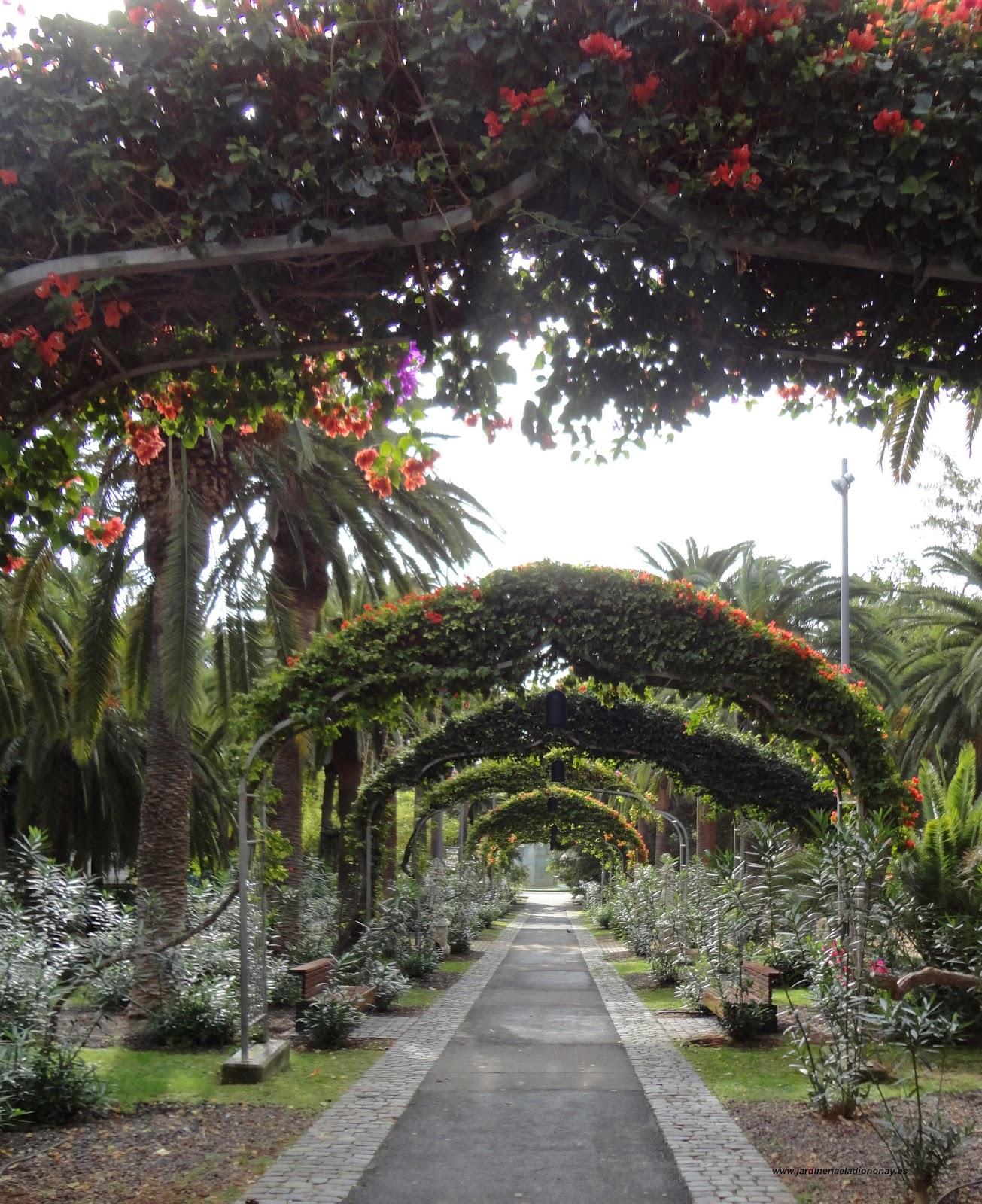 Jardineria eladio nonay arcos en jardiner a jardiner a for Arcos para jardin