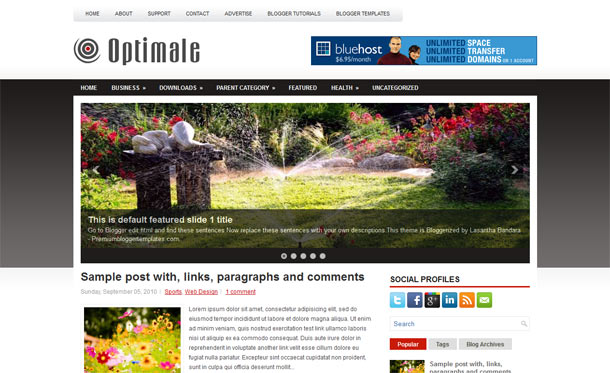 optimale blogger template