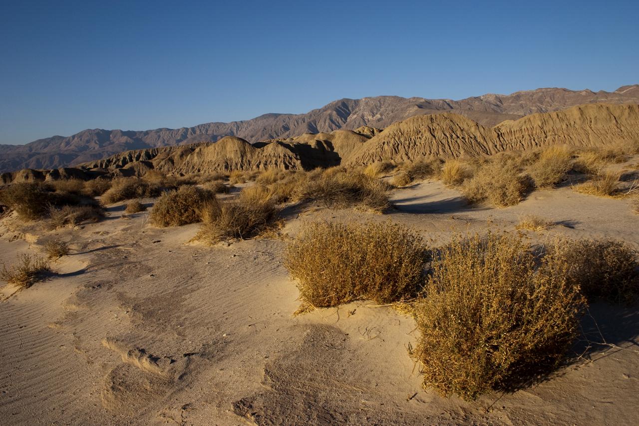 anza borrego desert state park robert djakovic photography