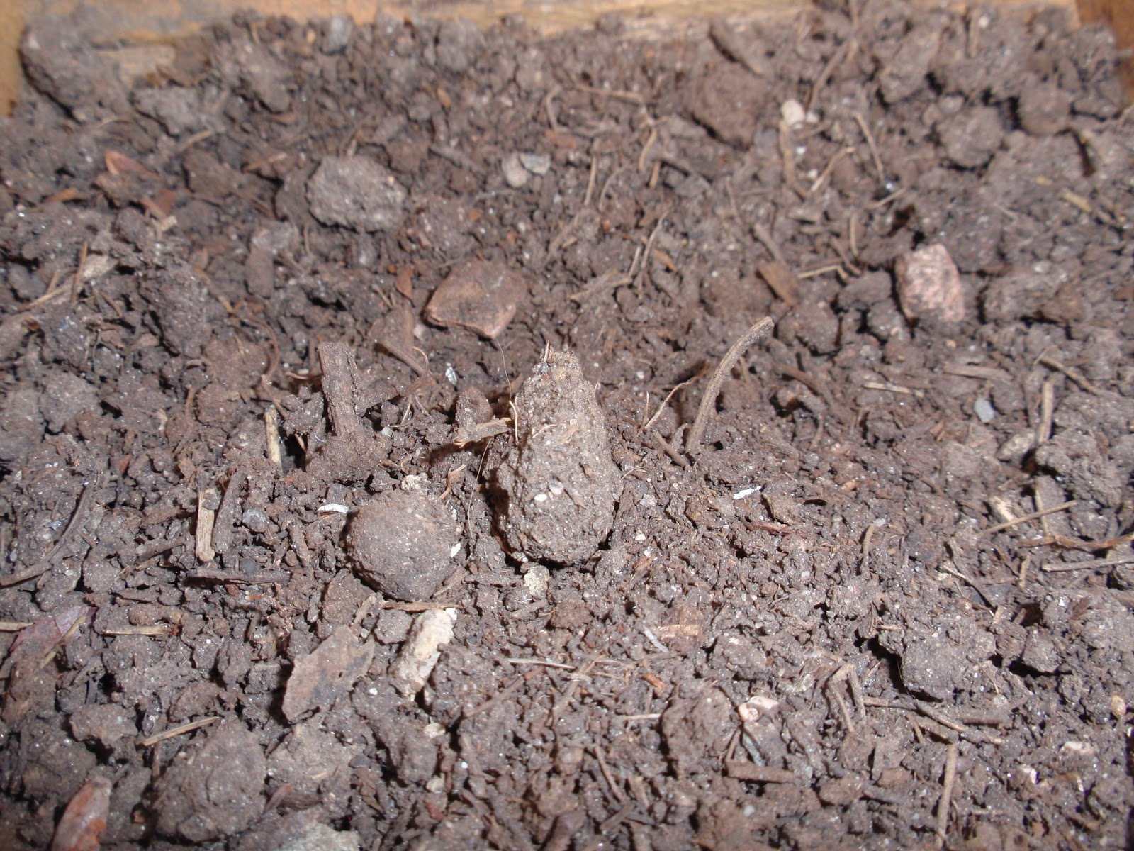 how to break down clay soil