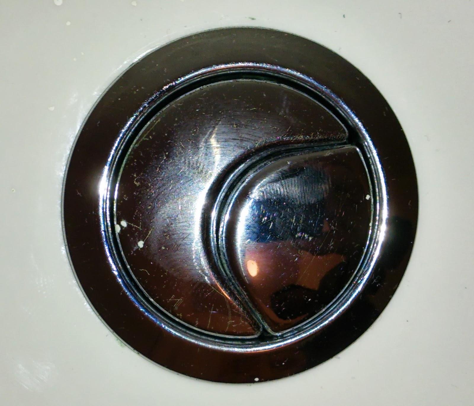 Flush buttons