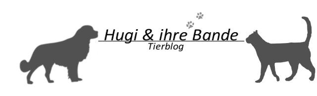 Hugi & ihre Bande
