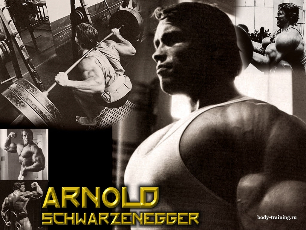 Arnold Schwarzenegger Bodybuilding Wallpaper   Bodybuilding Wallpapers    Arnold Schwarzenegger Bodybuilding Quotes Wallpaper