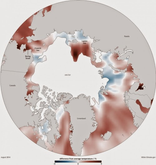 Arctic Ocean temperatures in August 2014. (Credit: climate.gov) Click to Enlarge.