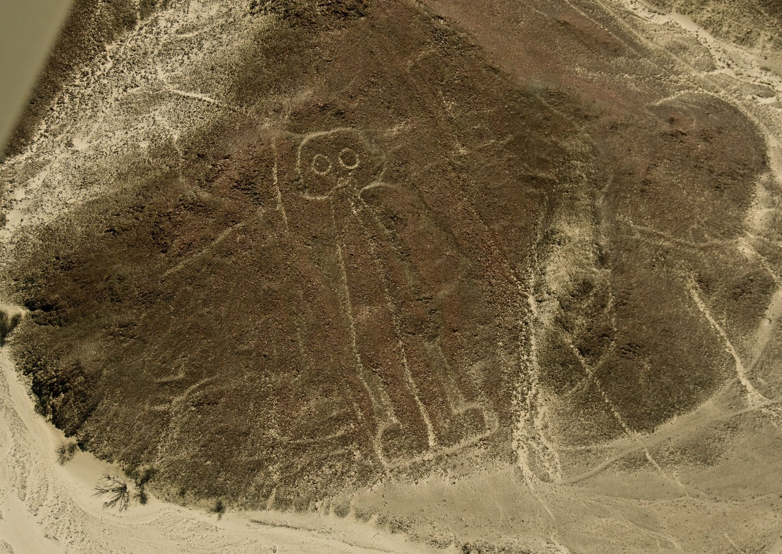 Secrets of drawings on the Nazca plateau 24