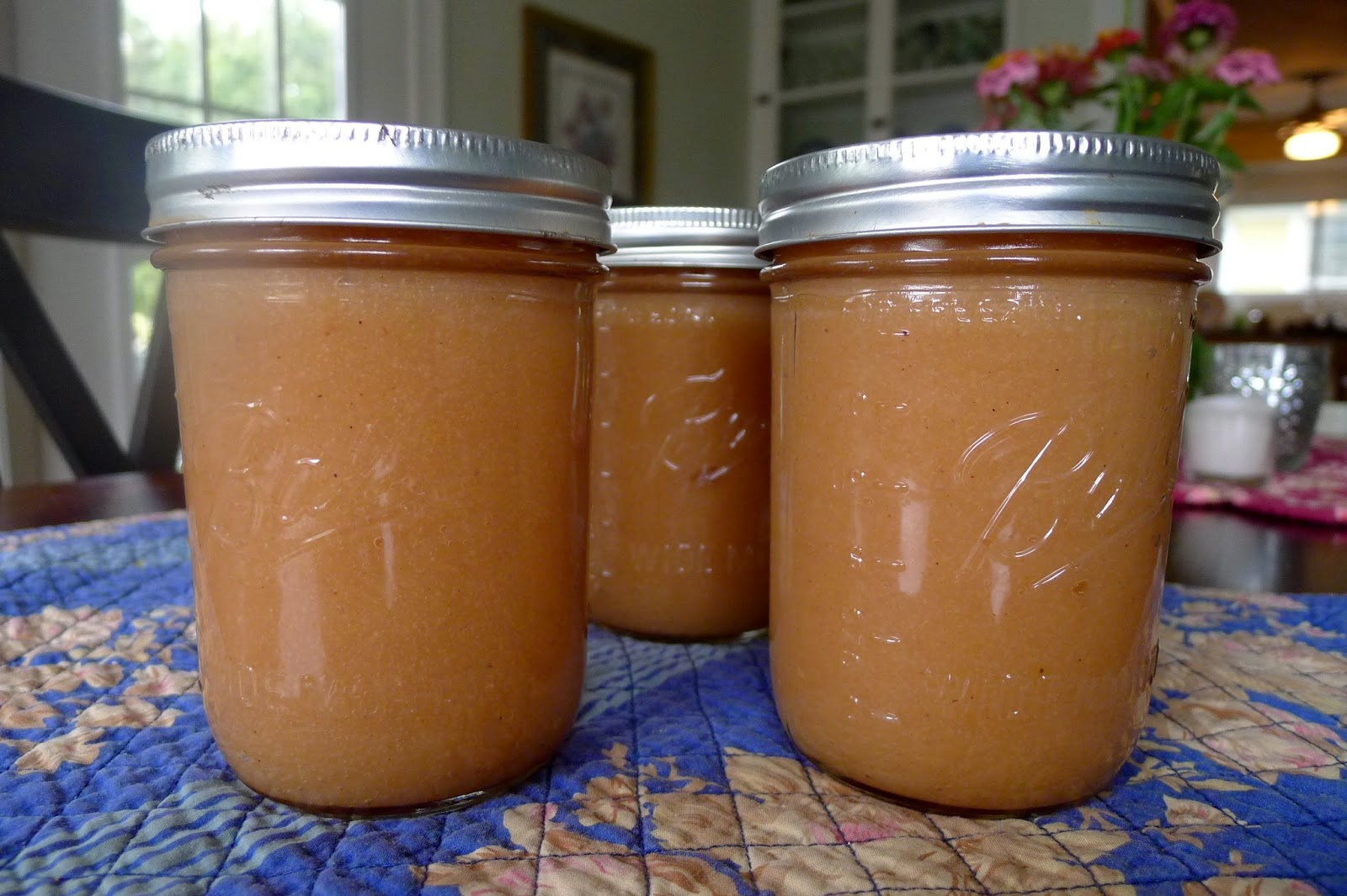 Spiced Apple Sauce recipe
