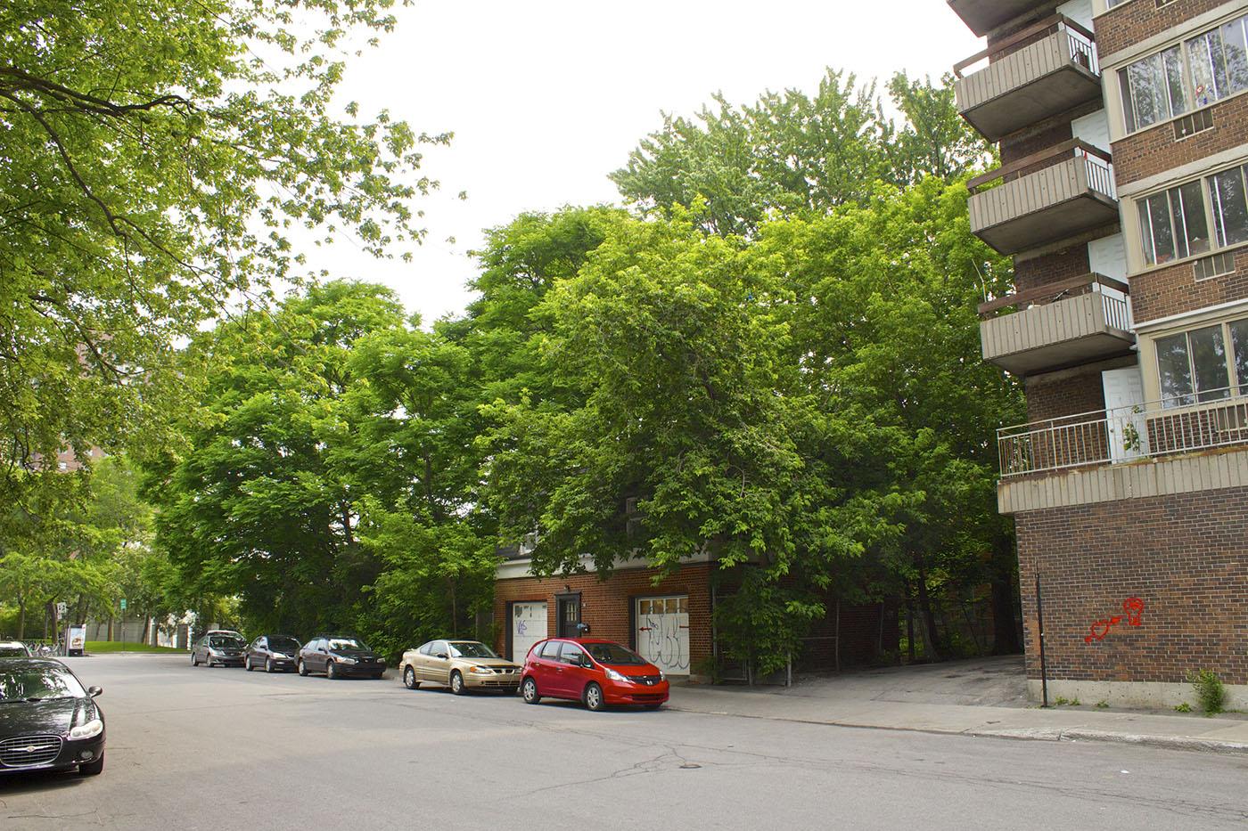 Flora urbana notman un jardin historique 1 for Le jardin imparfait