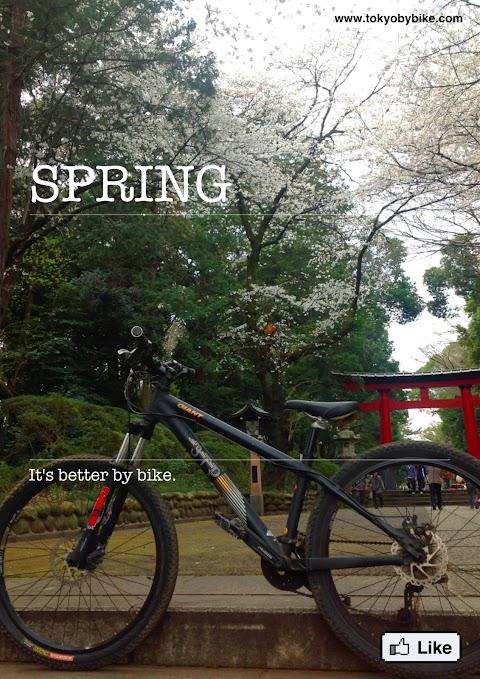 Spring in Japan. It's better by bike.