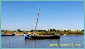 MOITA ( 1 )