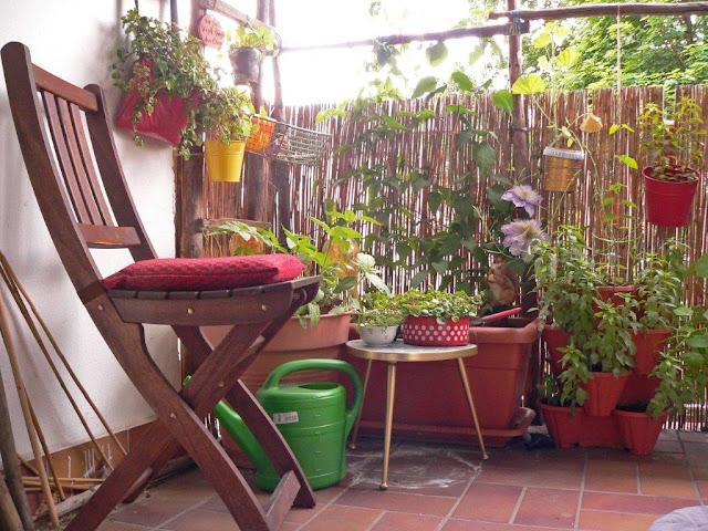 Balkon Blumen Gemüse Selbstversorger Pflanzen Innenstadt Oase Sommer