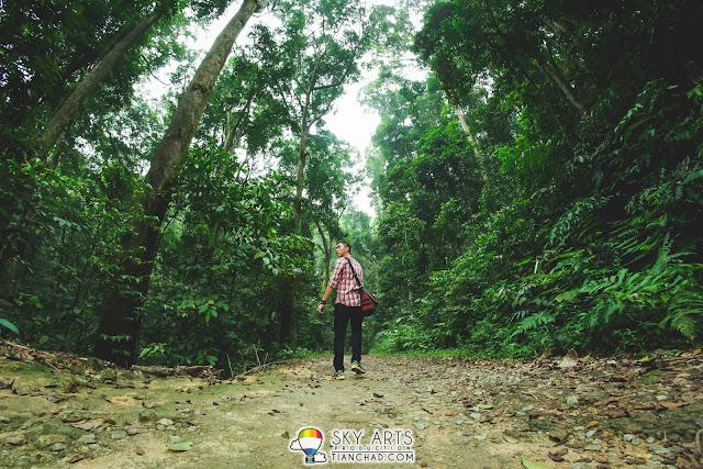 Nature trekking in FRIM Kepong Kuala Lumpur