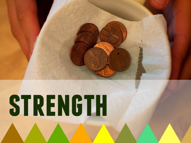 preschool science strength activity- toilet paper