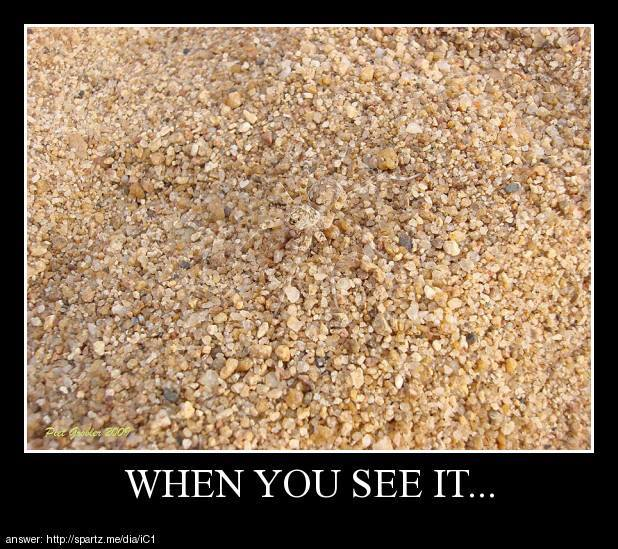 dafuq when you see it find it and hit like can you