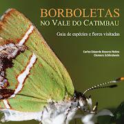 Borboletas no Vale do Catimbau - Clique na imagem (link) para mais detalhes