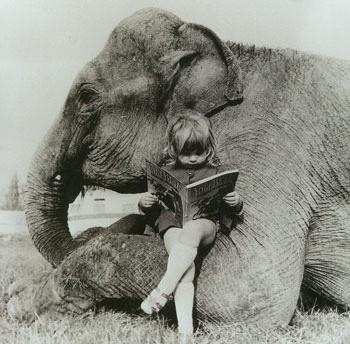 garota lendo com um elefante