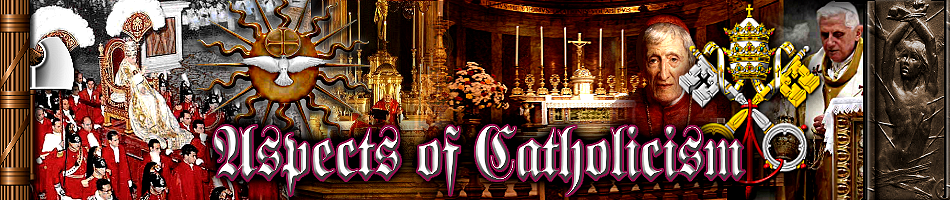 Aspects of Catholicism
