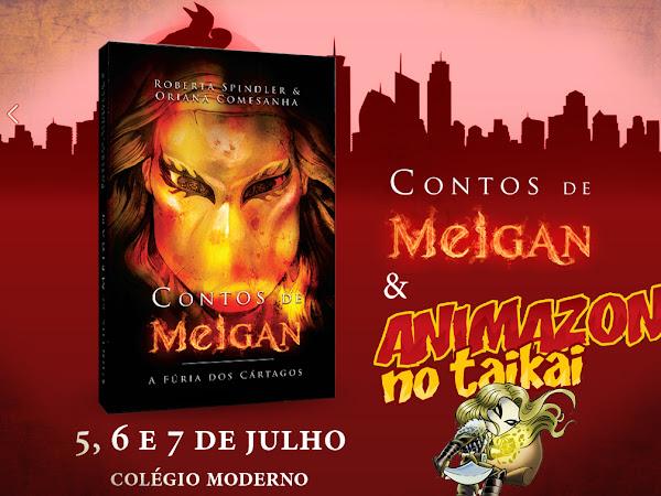 Animazon 2013 em Belém: Sala Contos de Meigan