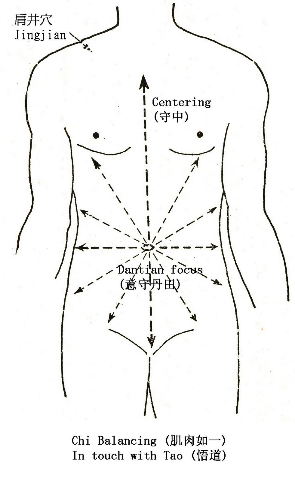 Breathing Diaphragm Diagram Imageresizertool Com