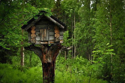 Mi princesa del bosque casitas con encanto - Casitas del bosque ...