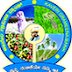 Kaveri Grameena Bank Recruitment 2015 - 12 Officer Scale II (IT) Posts