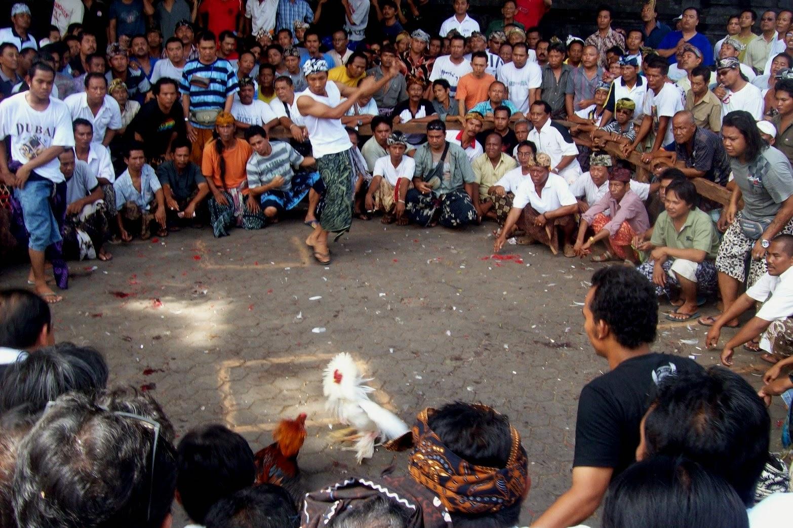 24 Kata Mutiara Xtc Photos Kata Mutiara Terbaru