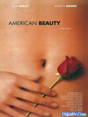 Vẻ Đẹp Mỹ - American Beauty