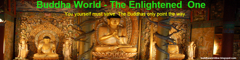 Buddha World - The Enlightened  One