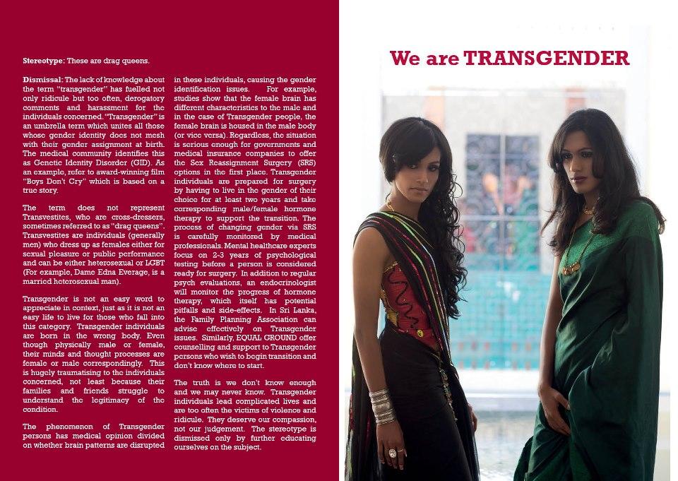 psychology term paper the transgender mind