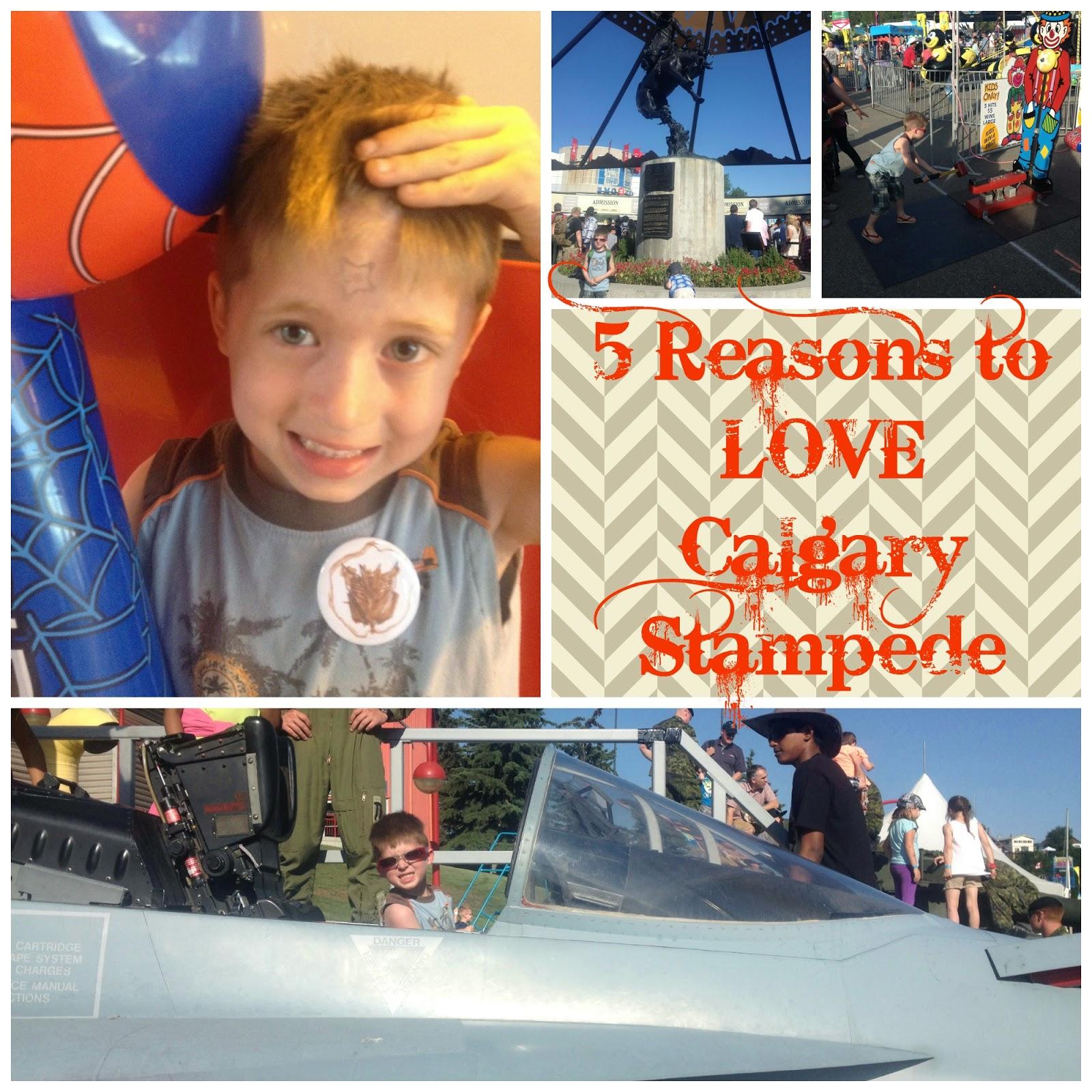 Ruff Ruminations 5 Reasons To Love Calgary Stampede 2014