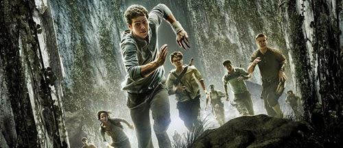 The Maze Runner new on DVD and Blu-Ray