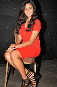 Glamorous Actress Sana Photo shoot gallery-thumbnail-14