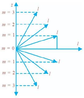 m sebagai proyeksi l pada sumbu z