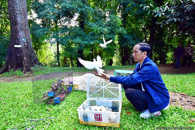 Jokowi Lepas Burung di Kebun Raya Bogor