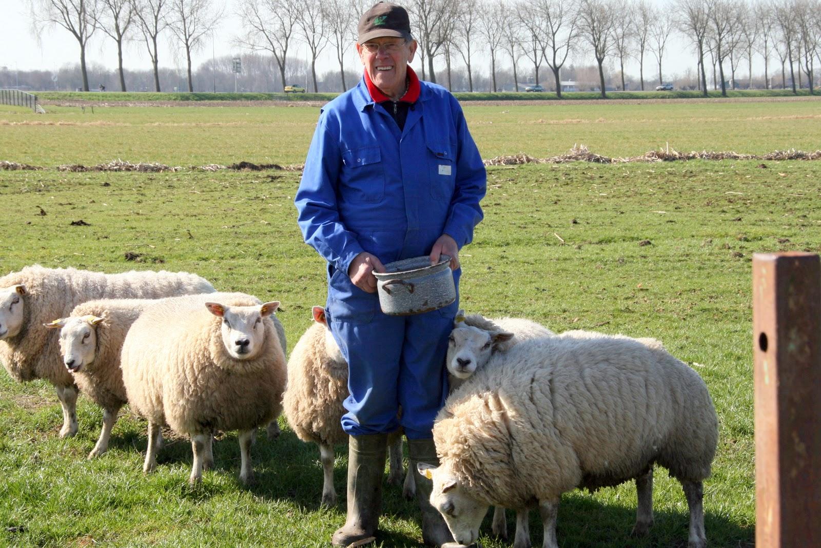 Een foto uit de 'oude doos'. Voorjaar 2009, Gerrit tussen de schapen.