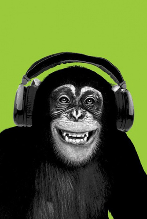 Chimpanzee Headphones Poster - 0001