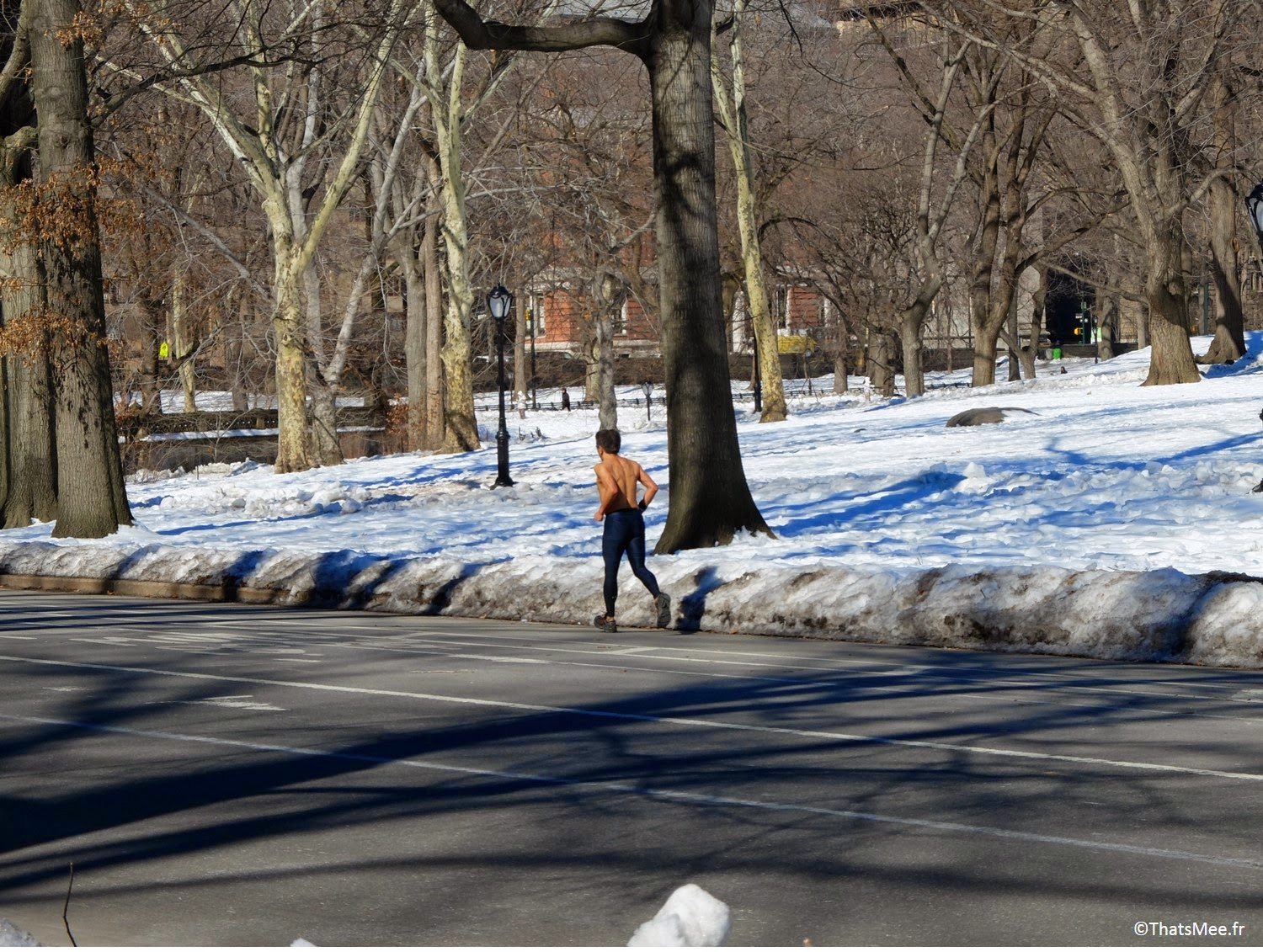 Crazy Joggeur torse-nu Central park New-York
