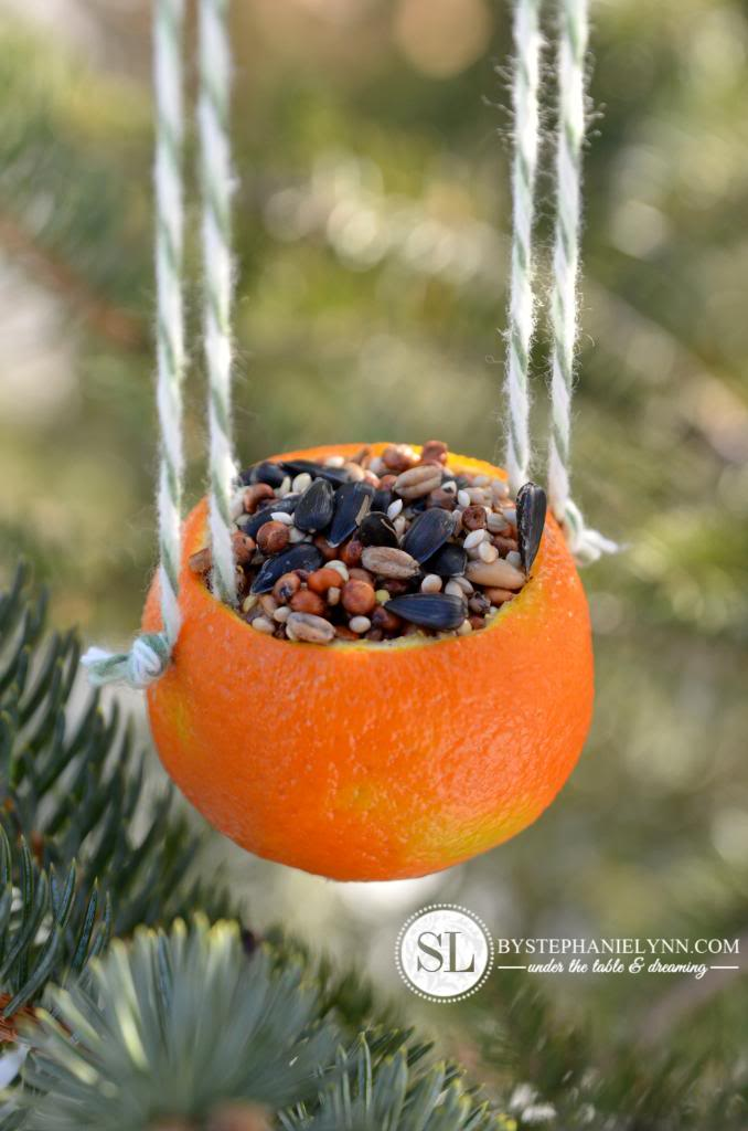 http://www.bystephanielynn.com/2013/12/orange-birdseed-ornaments-homemade-citrus-bird-feeders.html