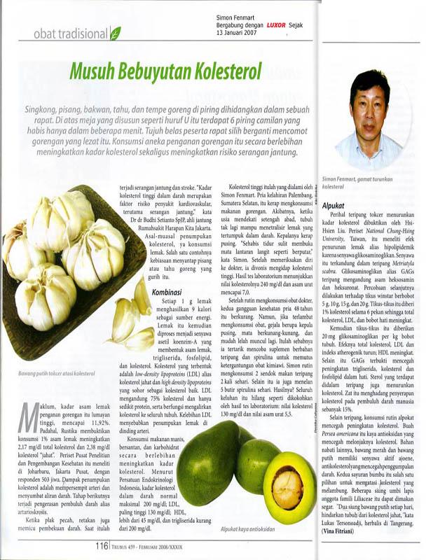 ... Mengatasi Bahaya Kolesterol Tinggi LDL Dengan Obat Kolesterol Alami