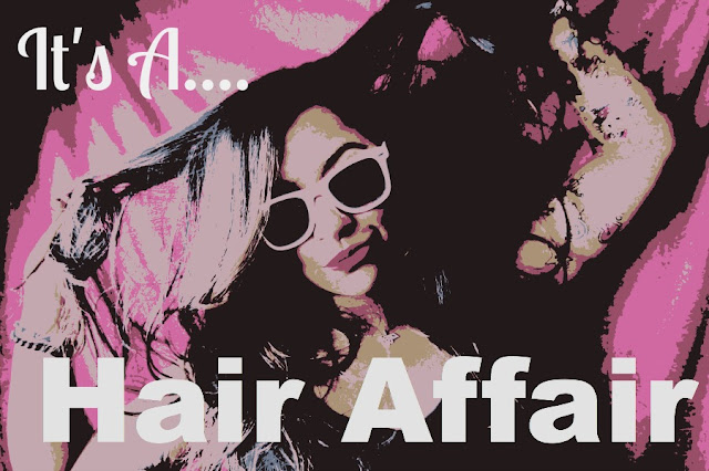 THE FASHION BEAUTY JUNKIE: My Hair Affair