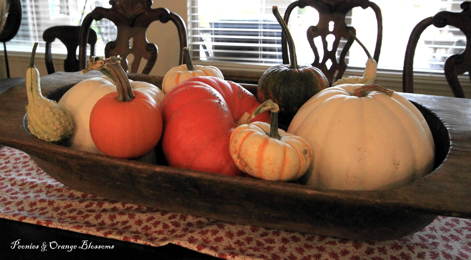 Mini pumpkin decorating ideas - Place Individual Mini Pumpkins On Your Table Setting You Can Use Them For Name Card Holders Too You Could Just Add A Little Ribbon With Someones