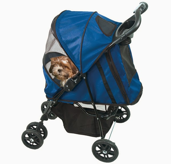 Canophilia, Pram for dogs