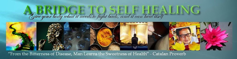 A Bridge to Self Healing