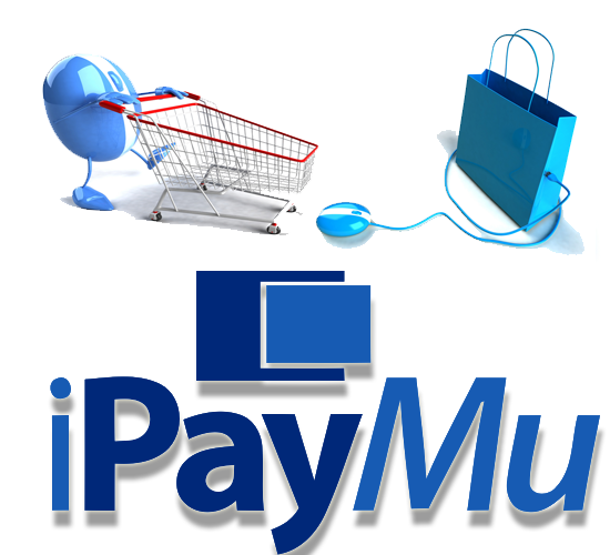 IPaymu a payment processor based in Indonesia.