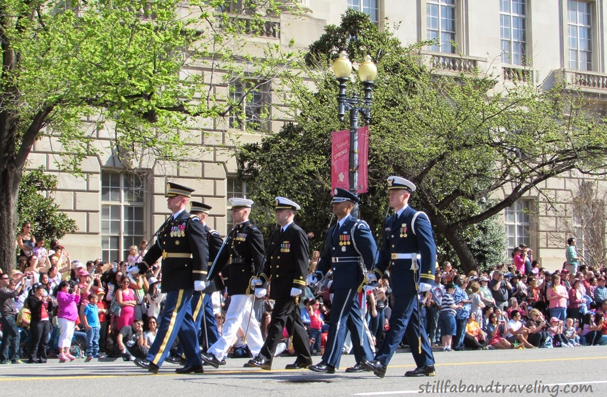 Cherry Blossom parade - military group marching