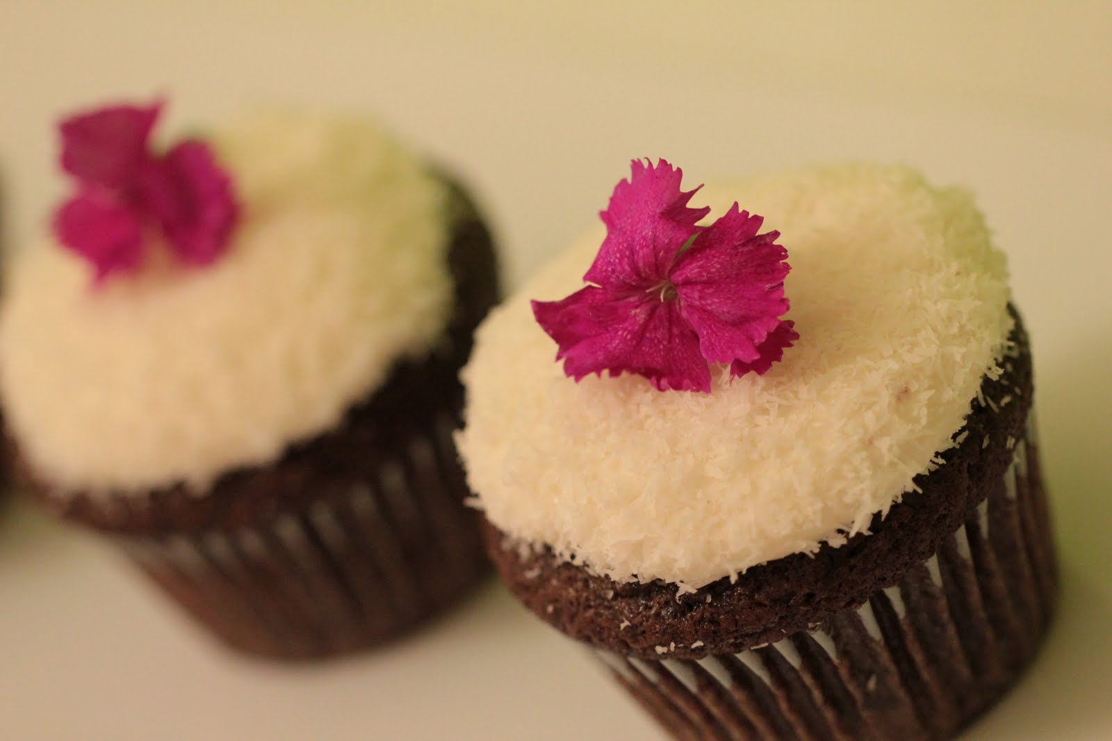... Amore: You Won't Believe They're Vegan - Coconut Snowball Cupcakes
