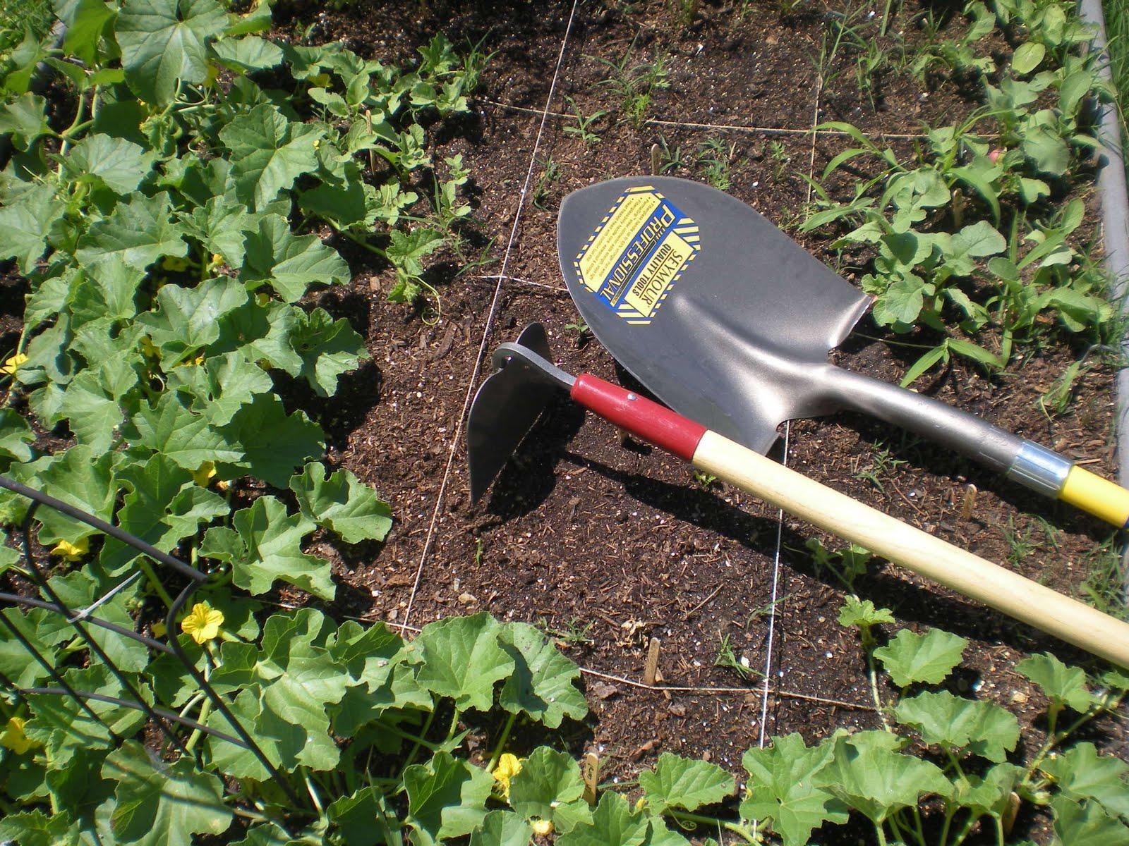 Gotta wanna needa getta prepared got gardening tools for Gardening tools you need