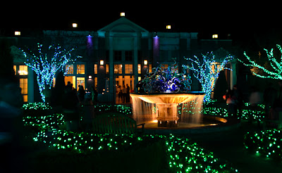 Garden Lights, Holiday Nights | December 2013 | Levy Parterre