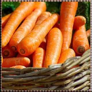 havuç salatası    Antioksidan, Böbrekler, C Vitamini, Cilt, Diş, Güneş Lekeleri, Karaciğer, Kepek, Limon, Mide Yanması, Yara,  Limonun faydaları, Vücut dinçlik,  enerji, Nezle,  Grip,   fayda, yarar, zarar,  Göğüs,  yumuşak,  öksürük,  Balgam,   Diş ağrısı,  Sinir,   Midevi, Yatıştırıcı,  spazm, . İştah havuç faydaları    apaçi    havuç apaçi    havuç tatlısı    havuç topları    havuç suyu    havuç çorbası    apaçi dansı    apaçi dansı havuç