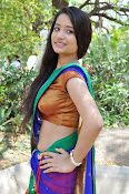 Santoshi sharma half saree pics-thumbnail-16
