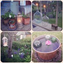 Älskade busiga trädgård!
